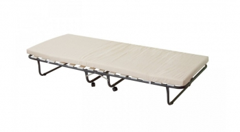 Раскладные кровати Даметекс: Кровать раскладная Виктория 800-М арт. В05-М